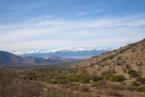 Campeonato Nacional de Trail Running se realizará en dependencias de la Universidad de Chile
